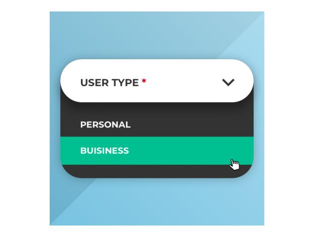 "CS-Cart ""Individual/Business Accounts"" Add-on"
