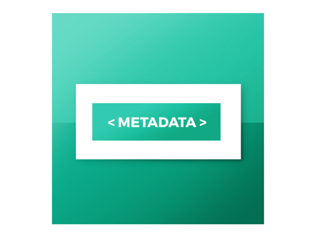 "CS-Cart ""Vendor's Meta Data"" Add-on"